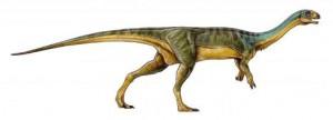 チリサウルス