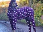 horse-onesie