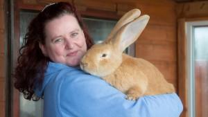 big-bunny-3